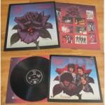 "13 aprile 1979 - esce ""Black Rose: A Rock Legend"" dei Thin Lizzy"