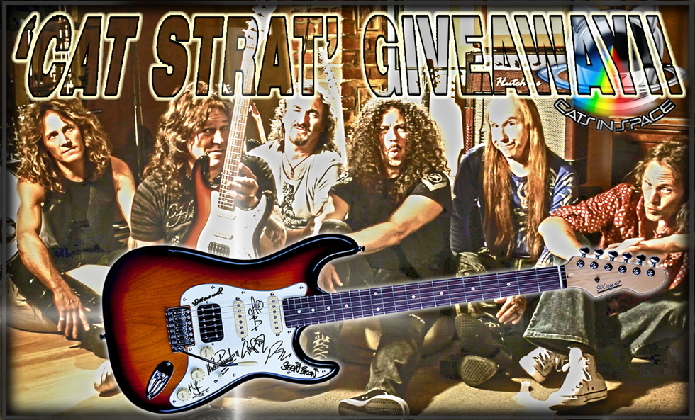 Cat Strat Giveway by Cats in Space