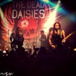 The Dead Daisies @ Druso - 05 06 2017
