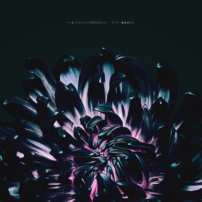The Contortionist - Our Bones - EP Cover