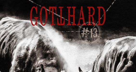 Gotthard - #13 - Album Cover