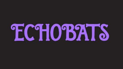 Echobats