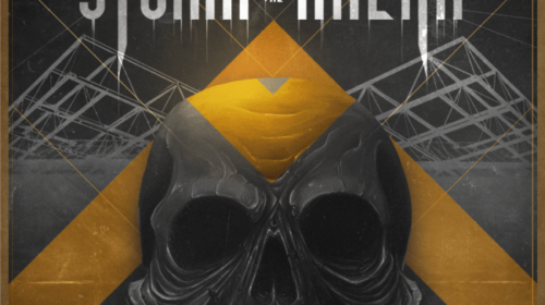 Storm The Arena Festival - Accor Arena 2020 - Promo